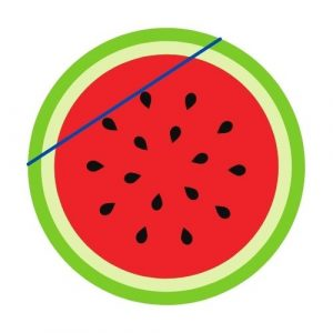 chord of a circle watermelon