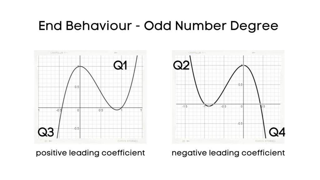 end behaviour odd number degree
